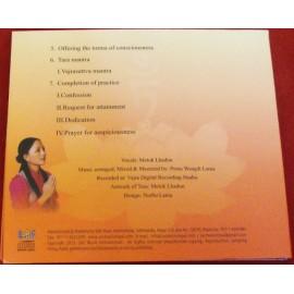 Meditative Buddhist Chants 2 part II