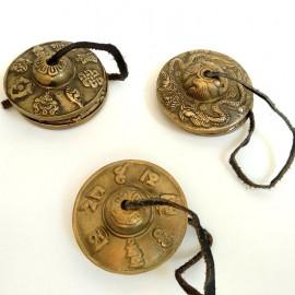 crotalo-tyngsia-bronce